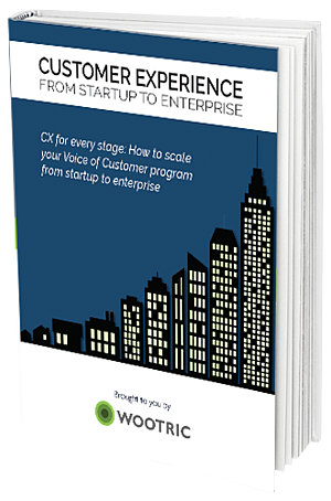 Customer Experience: From Startup to Enterprise