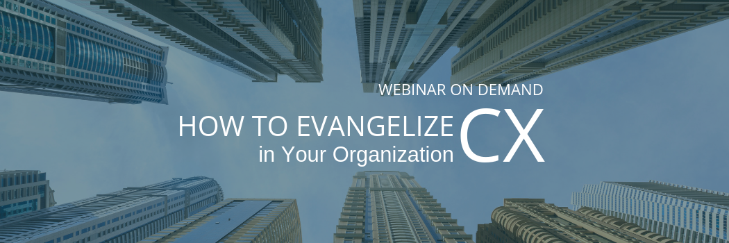 Webinar_ How to Evangelize CX (1)